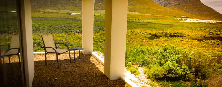 Protea View